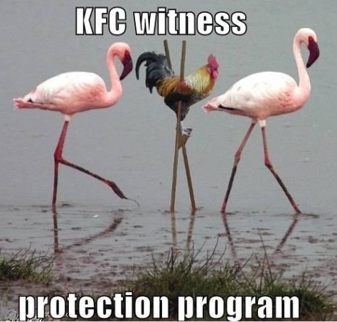 funny-kfc-witness-protection-program