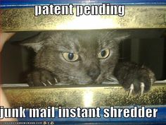 8af404c5f2bdc0f232c65bb6b3f42a09--junk-mail-patent-pending