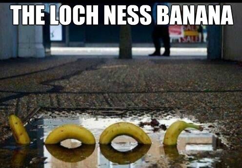 the-loch-ness-banana_o_2537845