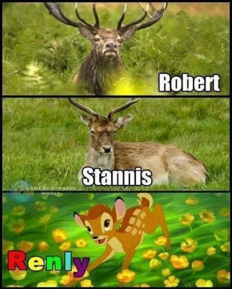 c5a2fd7679af66ddc1d493016968de7d--baratheon-brothers-game-of-thrones-meme