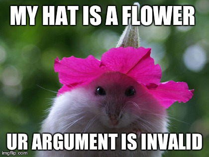 My-Hat-Is-A-Flower-Ur-Argument-Is-Invalid-Funny-Meme-Picture