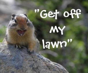 funny_ground_squirrel_mouse_pad-r627c2acfbdfa464598d698c08256374e_x74vi_8byvr_307