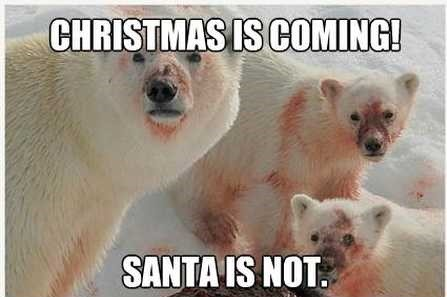 62-Christmas-is-coming-funny-polar-bear-meme