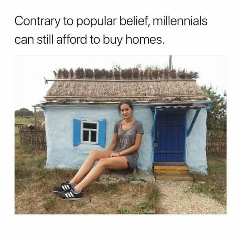 funny-meme-about-millennials-being-able-to-buy-houses-but-they-can-only-buy-small-houses
