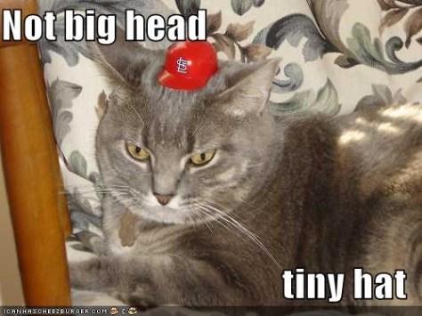 not-big-head-tiny-hat
