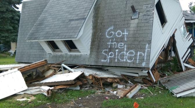 So much spider hate.